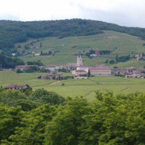 Domaine Joubert