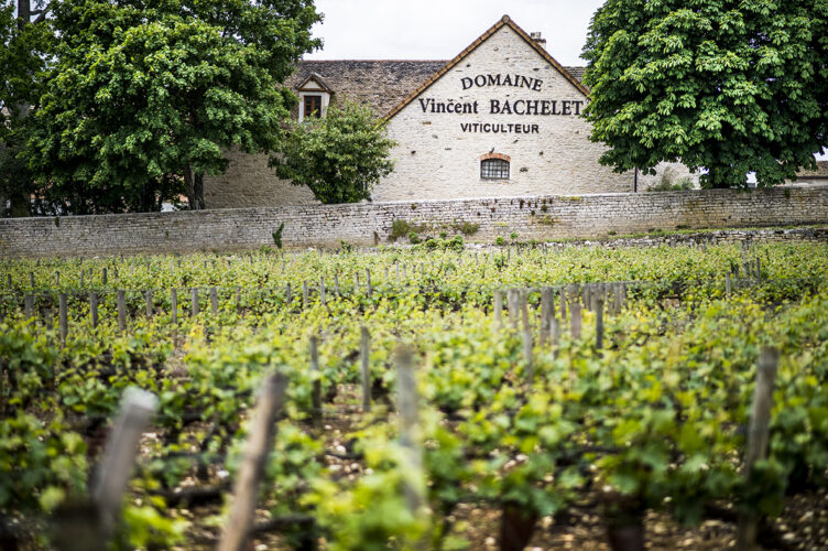Vincent Bachelet | Wine Affairs